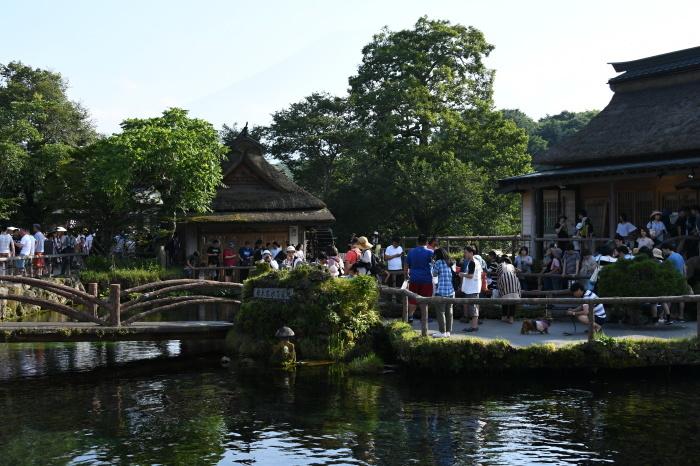 富士五湖周辺いろいろ_a0127090_16121036.jpg