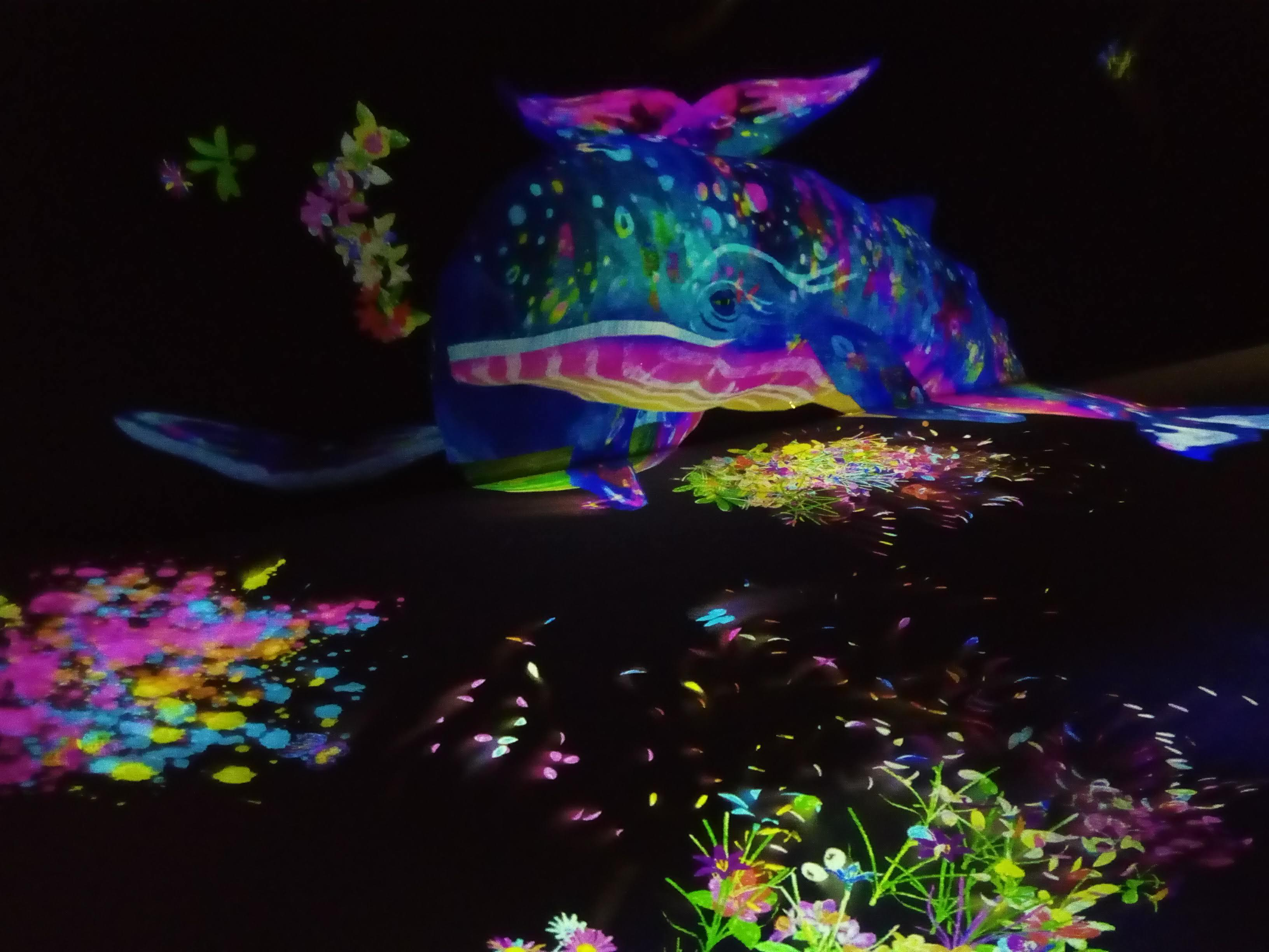 EPSON teamLab Borderless_a0057402_13040541.jpg