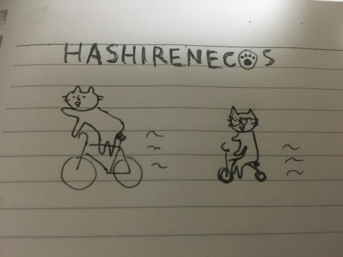 アルカラ15周年のしもがみ自転車企画!!〜それいけ☆しもがみくん〜(4日目)_c0222904_22512608.jpg