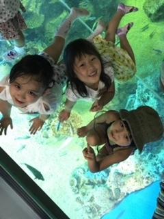 Summer Event 1 園児遠足_a0113809_11461296.jpg