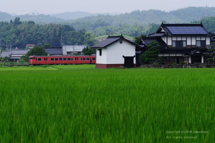 朱色の臨時列車がゆく_d0309612_21301805.jpg