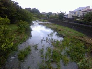 台風が来ても気持ちは前向きです。_b0255217_08522337.jpg