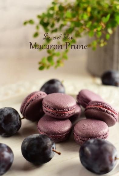 Macaron été NAGANOⅡ_b0197225_09080182.jpg