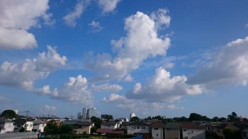 台風が去って_d0155439_22111633.jpg