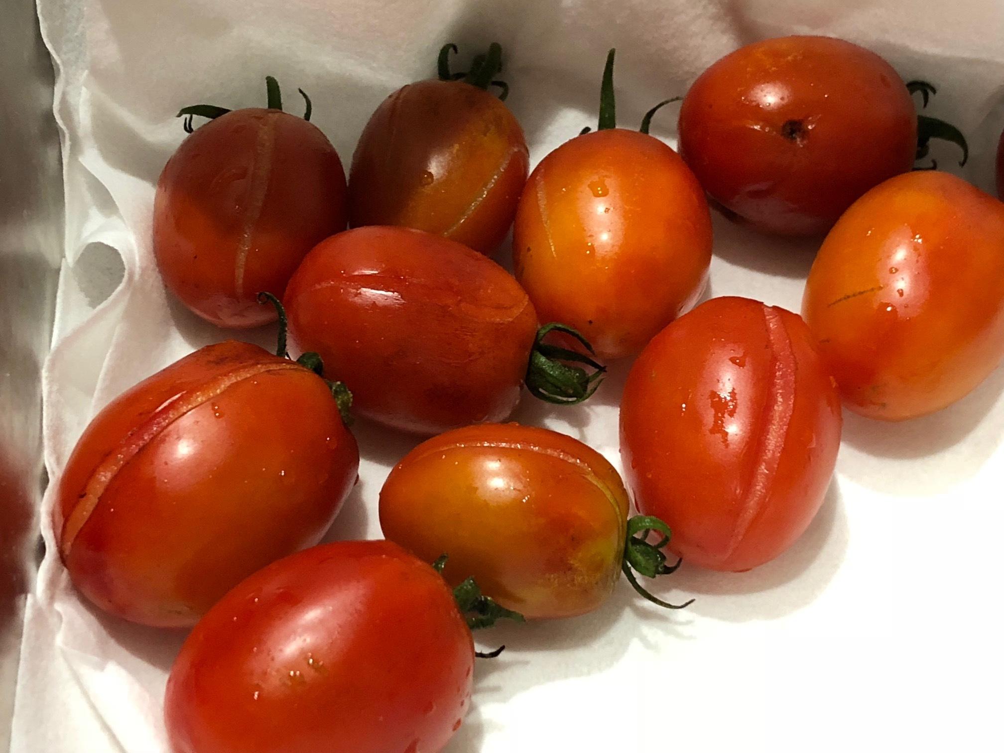 台風一過・・トマトは割れて 茄子の櫓斜めに 今朝の圃場はサウナのような状態_c0222448_11561057.jpg