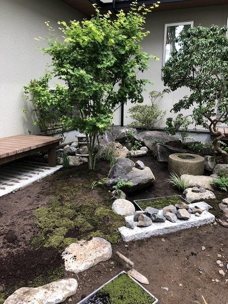 石の庭。_e0356655_20325591.jpg
