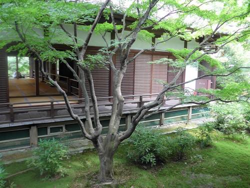 京都・祇園四条「pageone ページワン」へ行く。_f0232060_1631116.jpg
