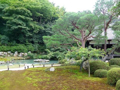 京都・祇園四条「pageone ページワン」へ行く。_f0232060_1634499.jpg
