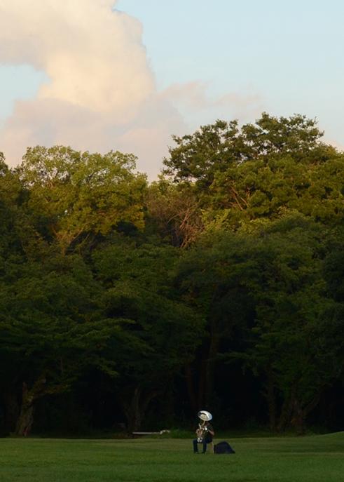 公園に出掛けると、草原でチューバを吹いている人がいました。_b0194880_21592478.jpg