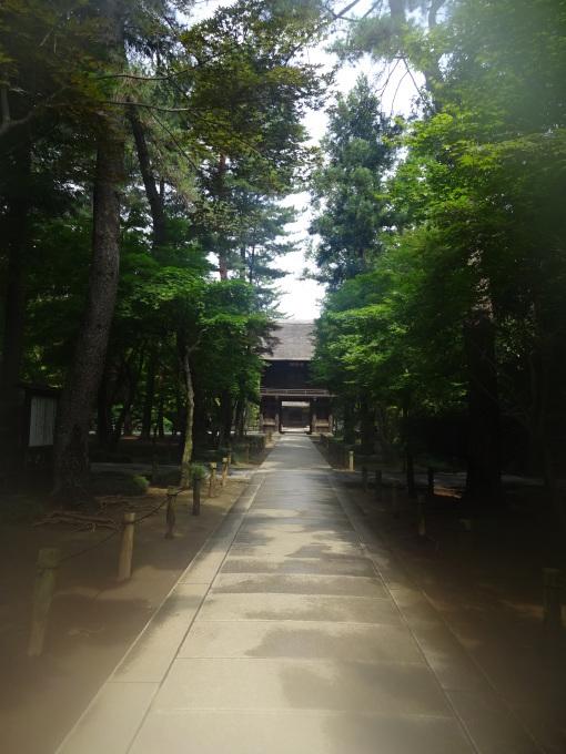 チャリで平林寺へ!_b0210688_16030458.jpg