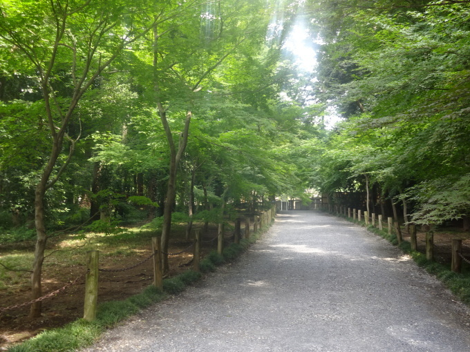 チャリで平林寺へ!2_b0210688_16064665.jpg