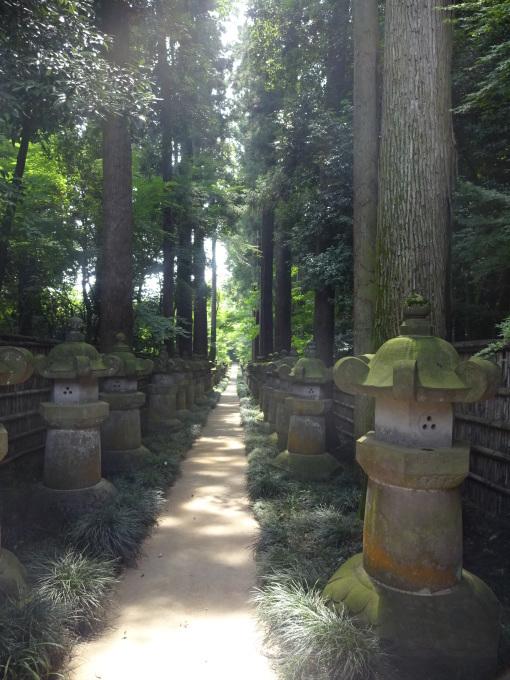 チャリで平林寺へ!_b0210688_16070313.jpg