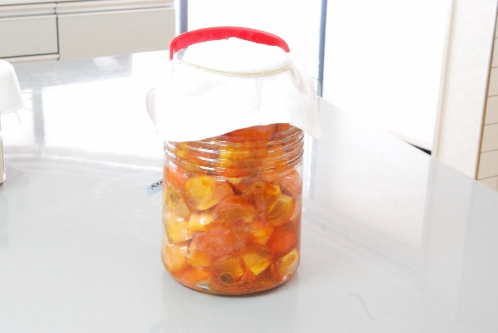 柿酢の作り方 簡単 プロ_c0122889_16305312.jpg