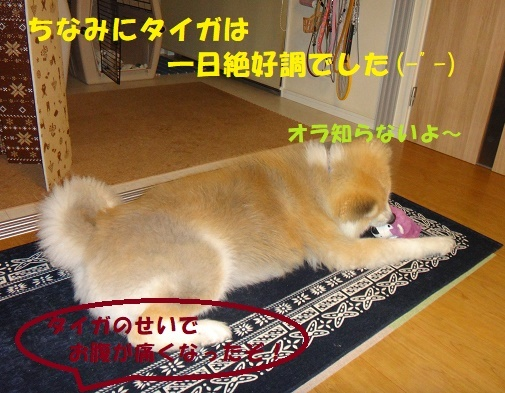 f0121712_00210427.jpg