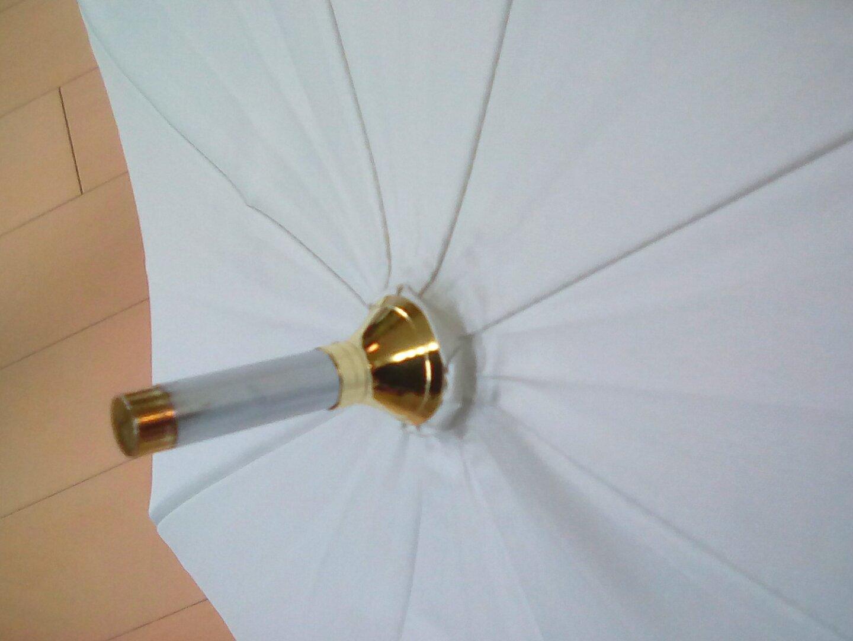 買ってよかった ♥ J K ( 女子高生 ) の日傘 🌺_e0379544_13150729.jpg