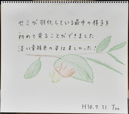 b0364195_12524553.jpg