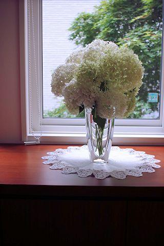庭のお花たち♪_c0090198_17301065.jpg