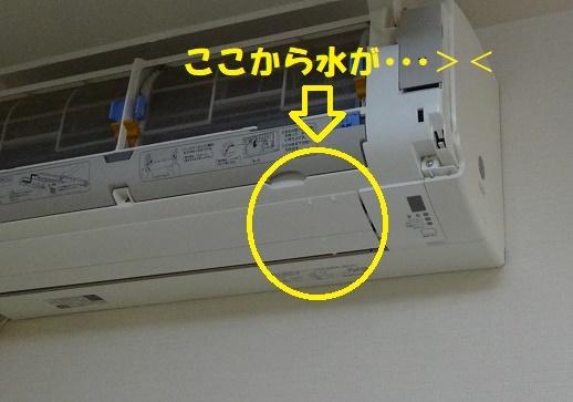 f0121712_16043721.jpg