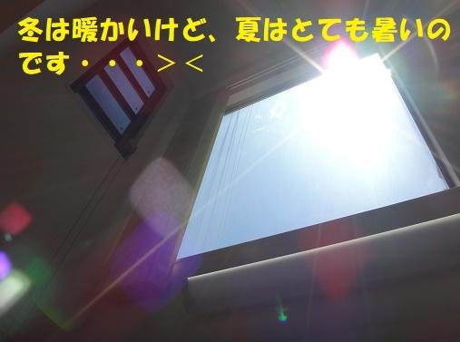 f0121712_16140437.jpg