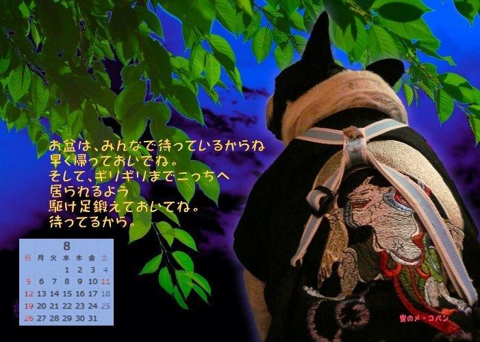 b0307951_23393068.jpg