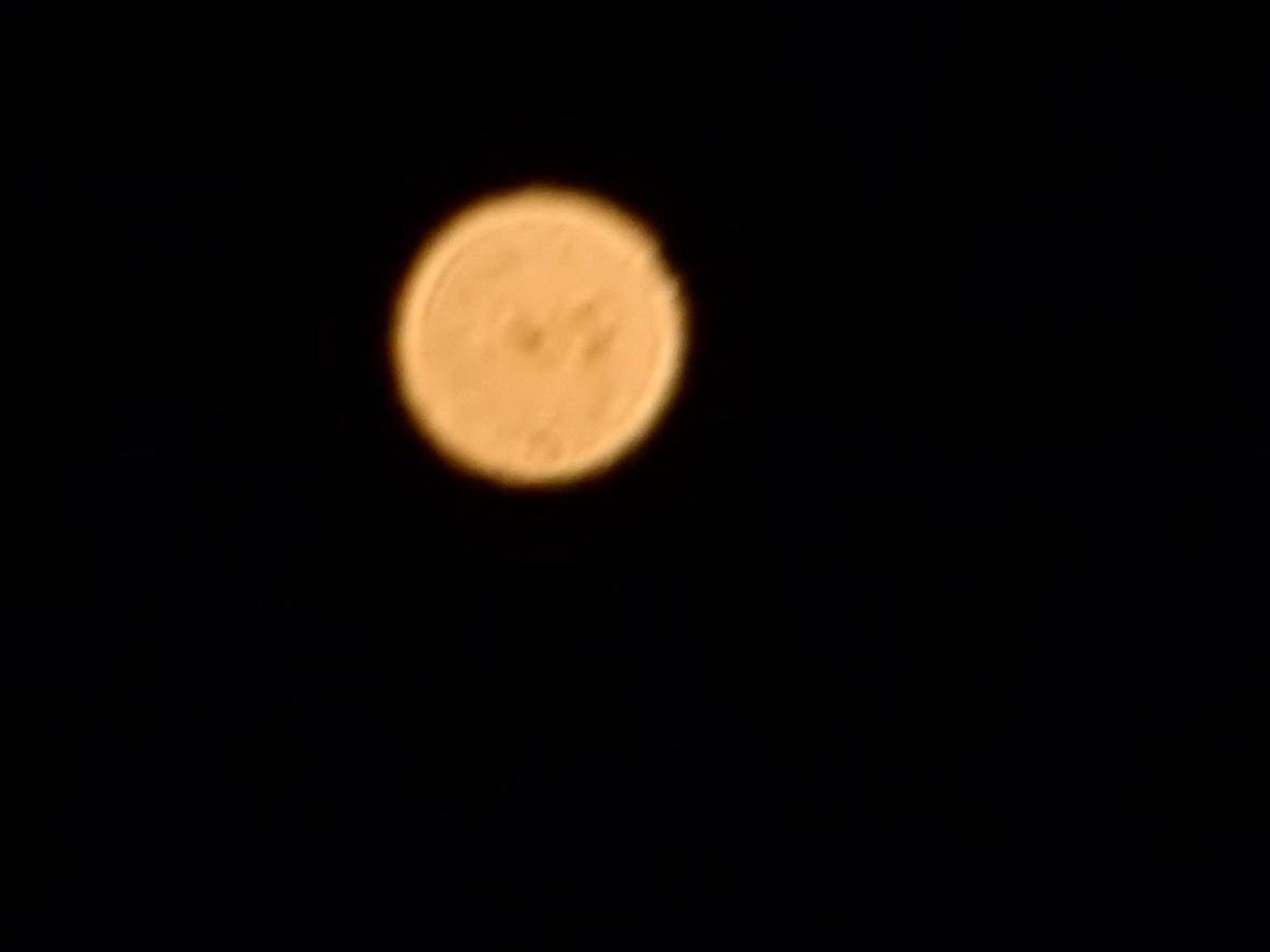 南の空に火星が輝く_e0175370_10023130.jpg
