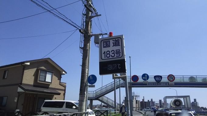 本日も最高気温36.2℃_e0094315_15430731.jpg