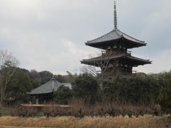 法起寺式と呼ばれる飛鳥時代の寺・法起寺_a0237545_09252629.jpg