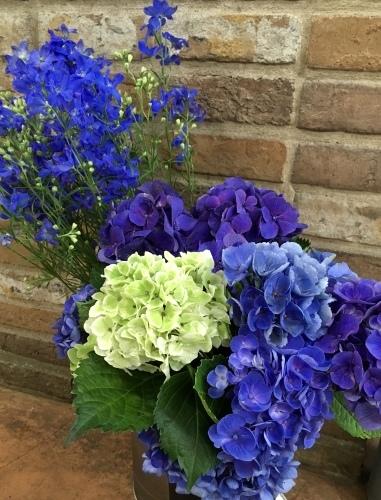 青い花_a0302448_17274277.jpeg