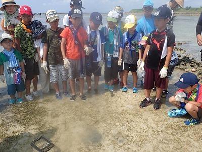 浦添市環境講座の観察会_c0180460_17234828.jpg
