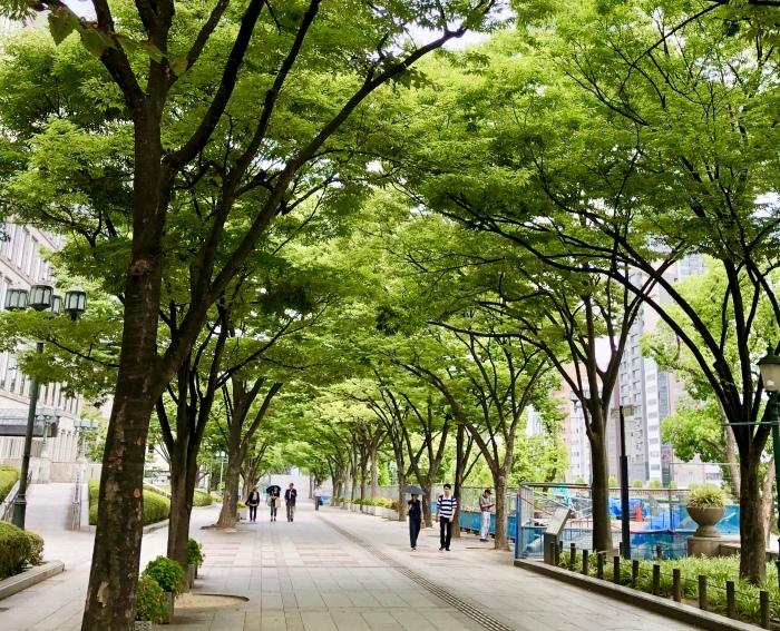 8/26(日)大阪 リスニングボディ個人セッションのお知らせ_a0142373_13232197.jpeg