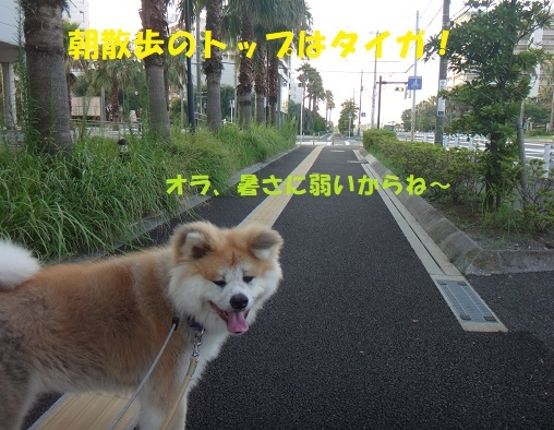 f0121712_15505844.jpg