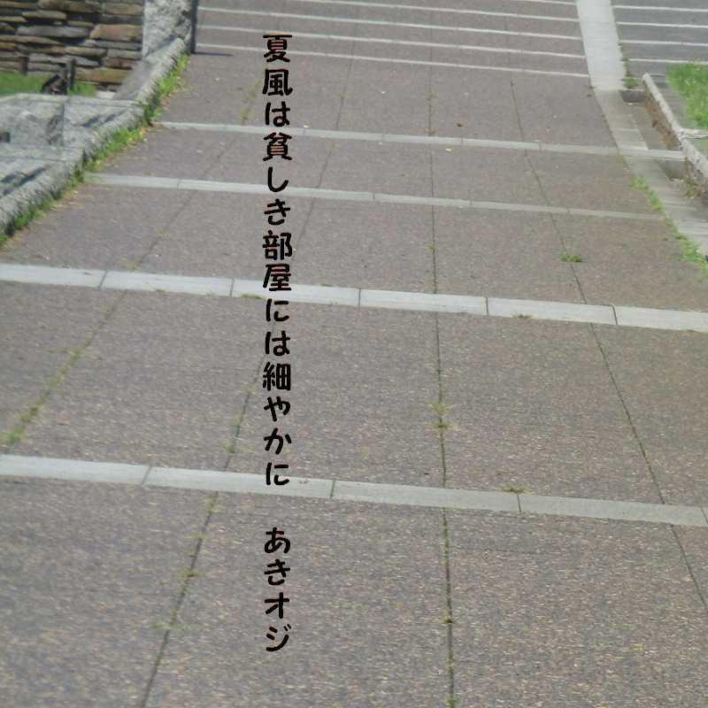 f0117041_05335072.jpg