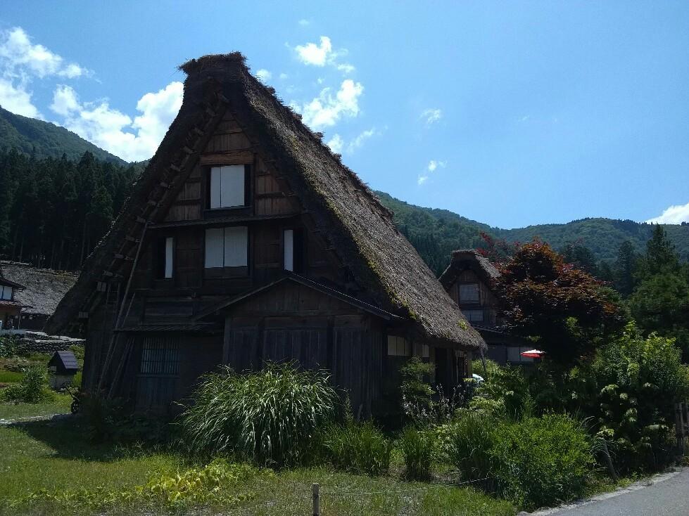 暑い日には辛い大根おろしで蕎麦をツルツルっと~☆_a0004752_20531222.jpg