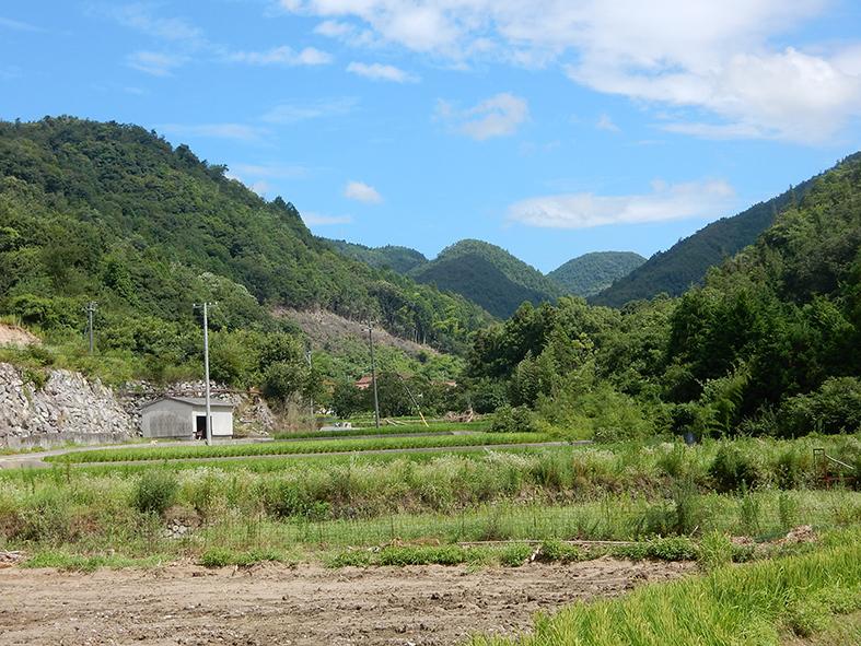 孤立集落へ待望の仮橋_e0175370_10013199.jpg