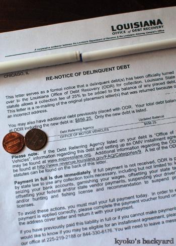ホエーを使ったチーズブレッド&食パン / ルイジアナ州から$656.25の罰金請求!_b0253205_06595428.jpg