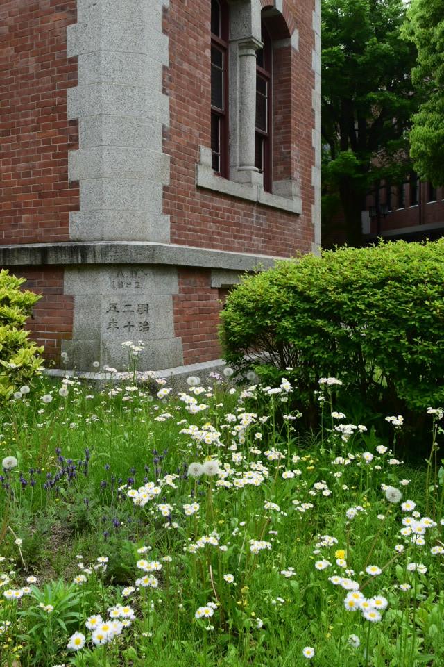 京都同志社大学クラーク記念館(明治モダン建築再訪)_f0142606_15483161.jpg
