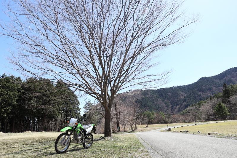 中津明神山 → ひょうたん桜公園_a0077663_08222420.jpg