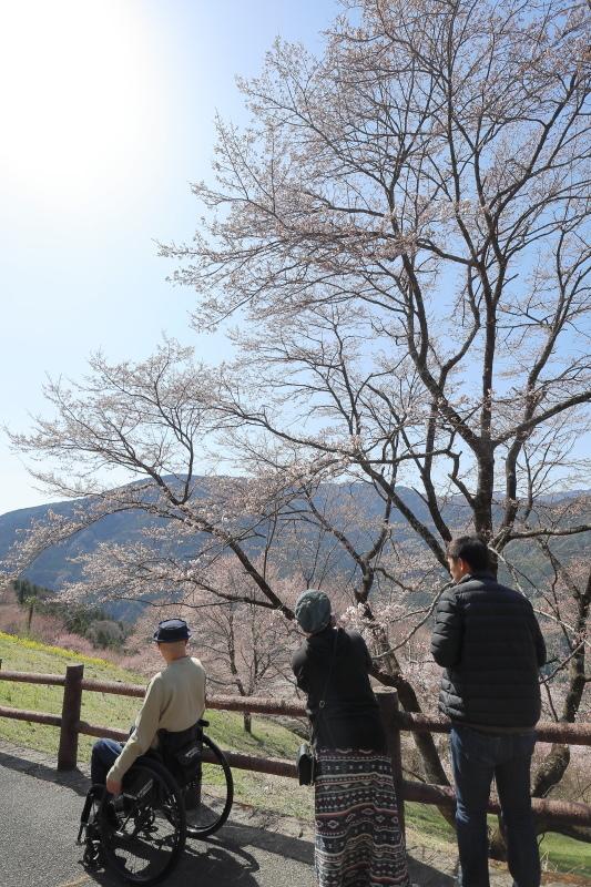 中津明神山 → ひょうたん桜公園_a0077663_08233627.jpg