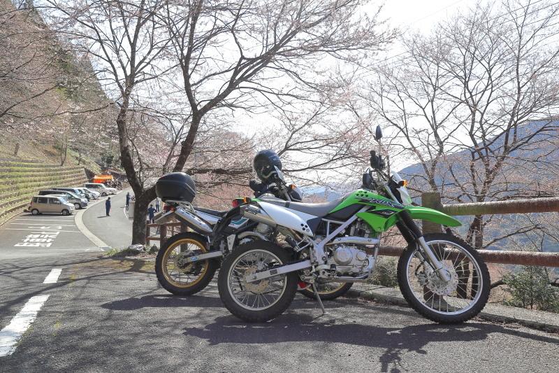 中津明神山 → ひょうたん桜公園_a0077663_08233694.jpg