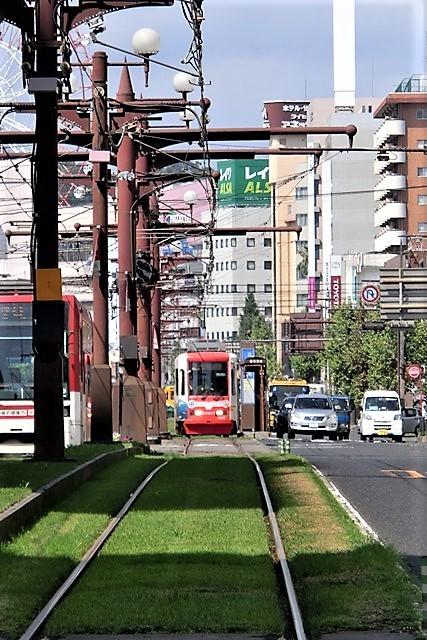 藤田八束の路面電車写真@鹿児島市内を走る路面電車は可愛い、線路の芝生が綺麗・・・西郷どん_d0181492_23464952.jpg
