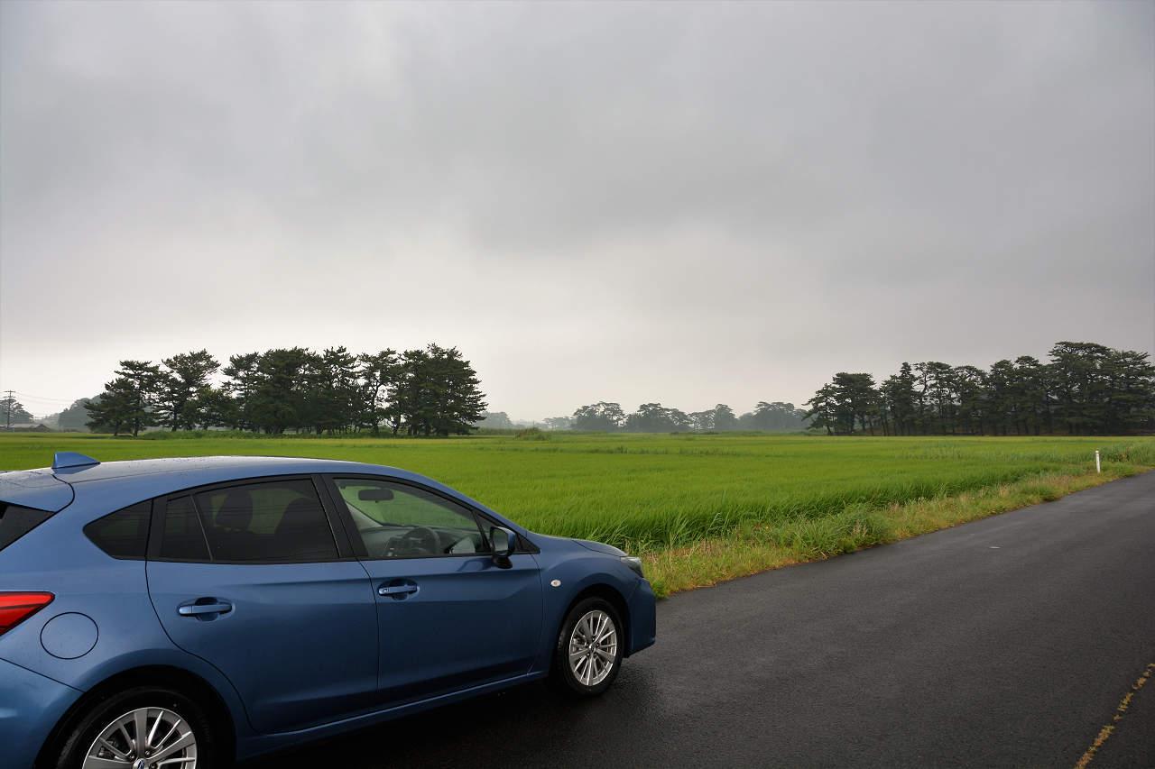 秋田竿灯祭りへ(1)往復550kmのドライブ_a0148206_17222722.jpg