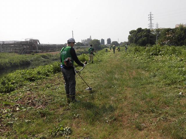 続く猛暑の中 「そうだ!沼川プロジェクト」で本年度2回目の滝川の草刈り清掃_f0141310_06490051.jpg