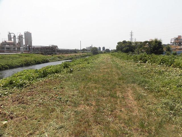 続く猛暑の中 「そうだ!沼川プロジェクト」で本年度2回目の滝川の草刈り清掃_f0141310_06490599.jpg