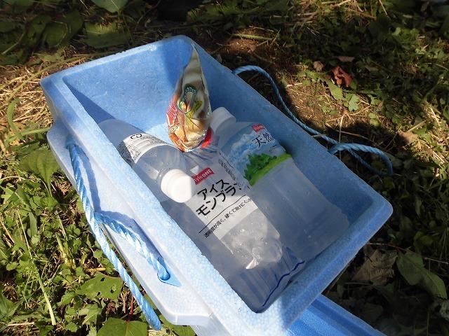 続く猛暑の中 「そうだ!沼川プロジェクト」で本年度2回目の滝川の草刈り清掃_f0141310_06502225.jpg