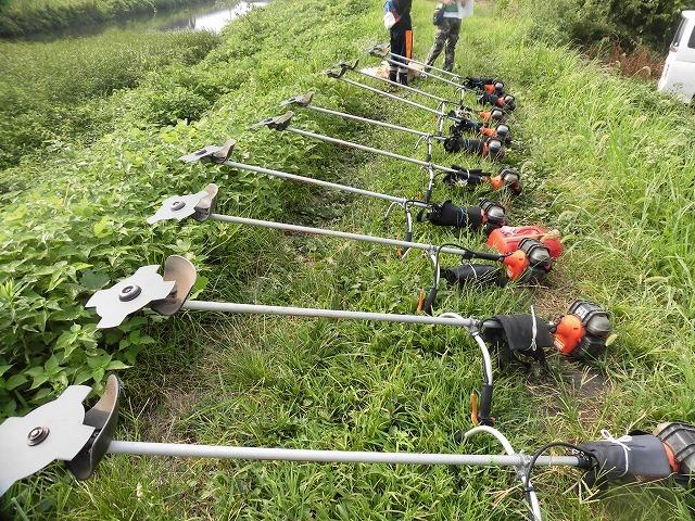 続く猛暑の中 「そうだ!沼川プロジェクト」で本年度2回目の滝川の草刈り清掃_f0141310_06503094.jpg
