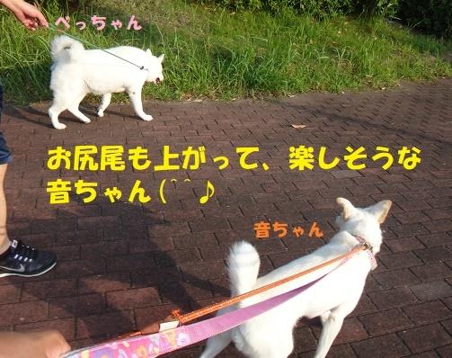 f0121712_09201184.jpg