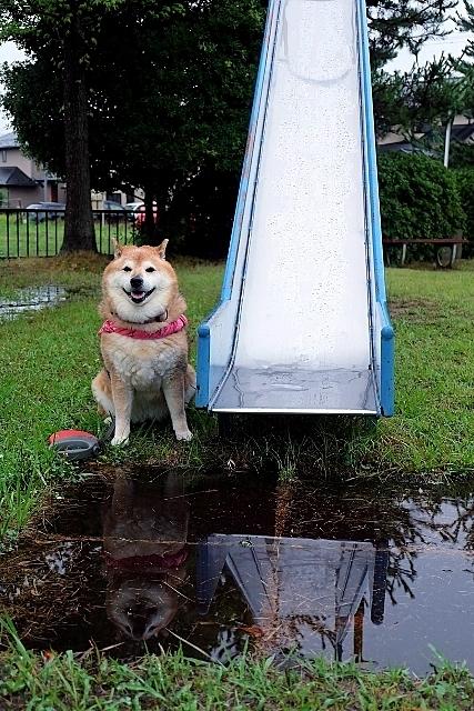雷雲  激しい雨  仙台七夕_b0314043_07180924.jpg