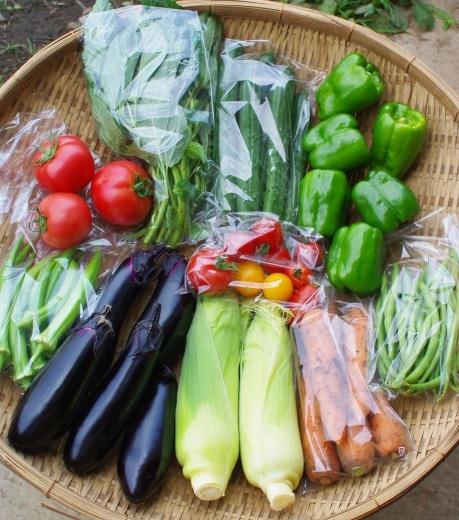 今週の野菜セット(8/7~8/11着)_c0110869_13452258.jpg
