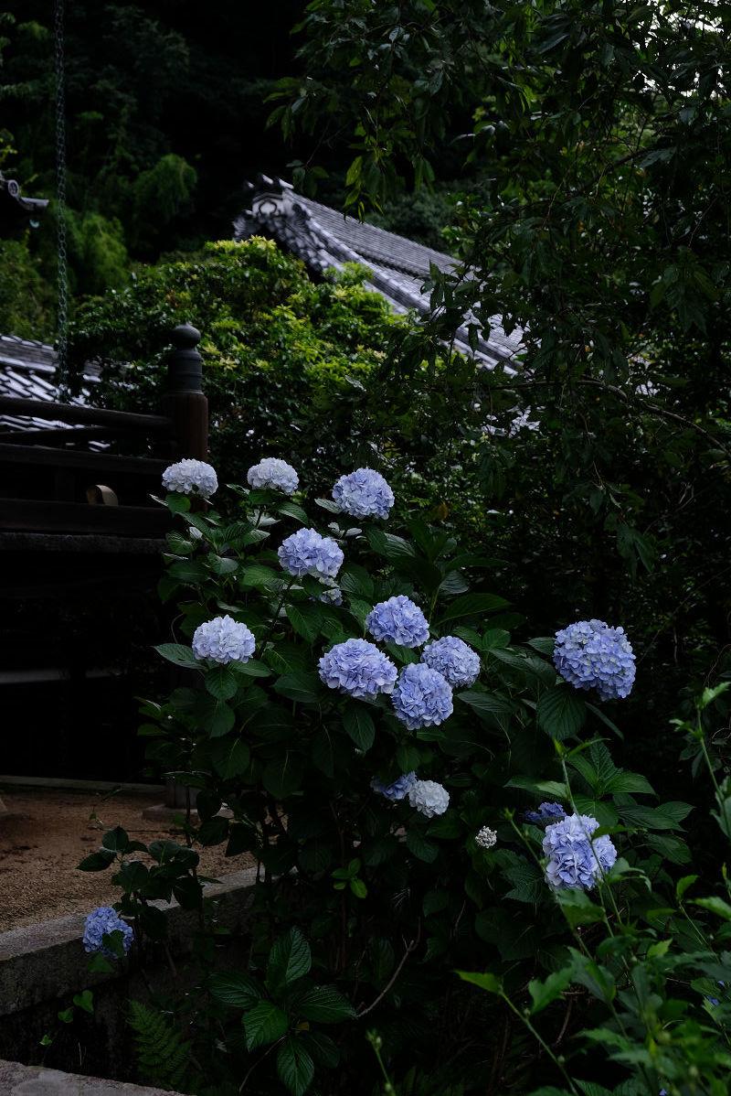 山崎聖天_f0021869_23563516.jpg