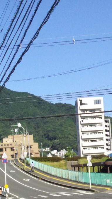 朝は過ごしやすいが昼は猛暑へ 秋2日目_e0094315_09505946.jpg